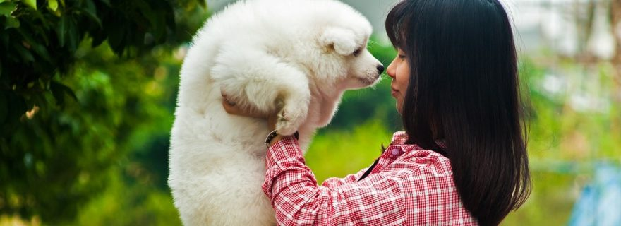 Truly a (Wo)man's Best Friend – Emotion Recognition in Animals